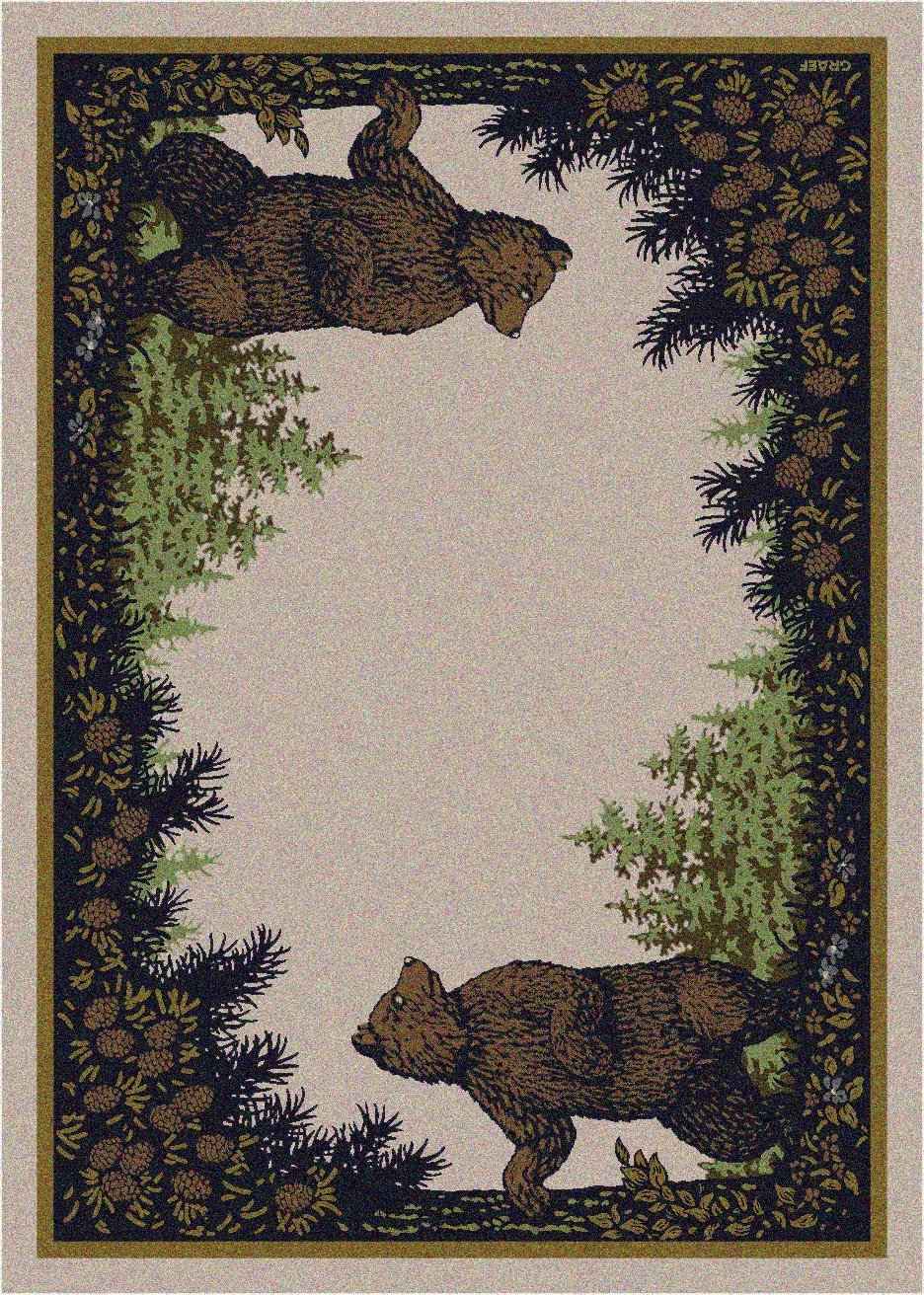 cabin area rug